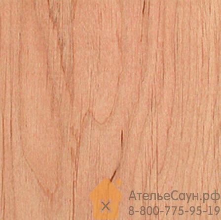 Дверь для сауны Harvia 9х21 (стеклянная, сатин, коробка ольха), D92105L